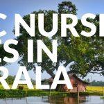 BSc Nursing Fees in Kerala