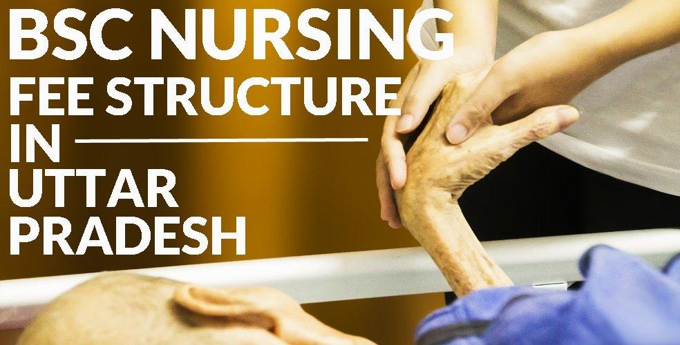 BSc Nursing Fees in UP or Uttar Pradesh