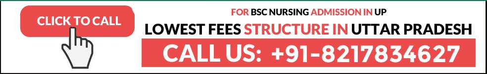 BSc Nursing Fees in Uttar Pradesh Admission Contact